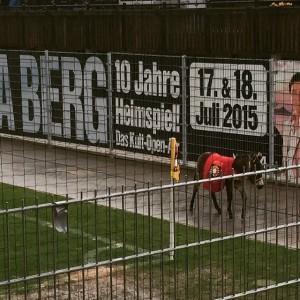 Der #effzeh hat Hennes aber #grossaspach einen Esel und Andrea Berg! #groundhopping