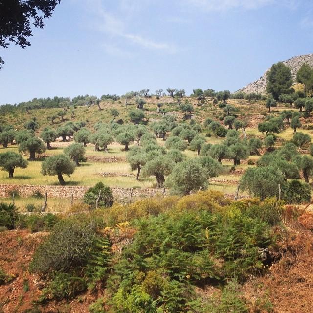 Mallorca, Wanderung