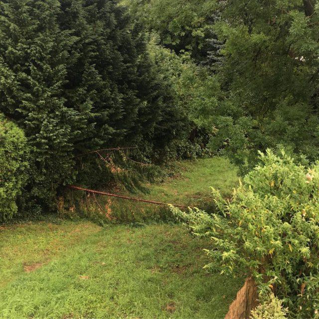 Bei unserem Nachbarn gab es einen kleinen Sturmschaden Weiterlesen