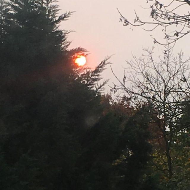 Die Sonne hatte heute morgen auch verschlafen und war ganzhellip
